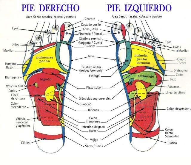 Masajear los pies antes de dormir es MUY IMPORTANTE!, te explicamos porque y te enseñamos cómo hacerlo